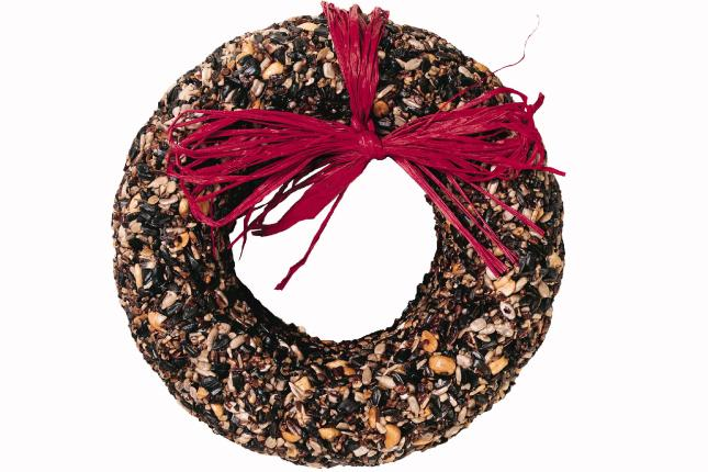 WBU Cranberry Fare Seed Wreath
